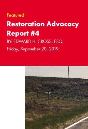 Restoration Industry Advocacy Report 4